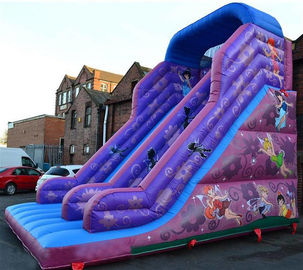 30ft Prinzessin Inflatable Dry Slide, Faires-Dia-purpurrotes riesiges federnd Dia fournisseur